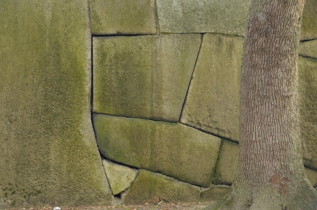 Arrangement de pierres qui nous rappelle les murs Incas aux propriétés anti-sismiques
